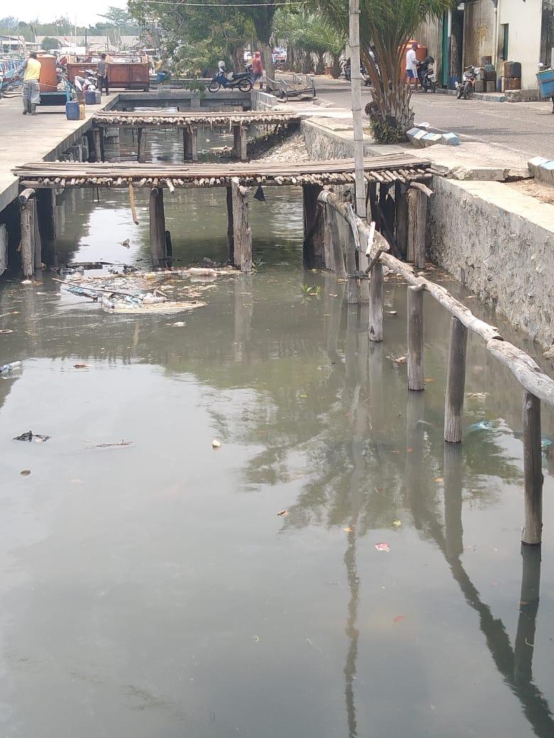 Bau Busuk Menyeruak Di kawasan PPN Tanjungpandan, Ini Penyebabnya
