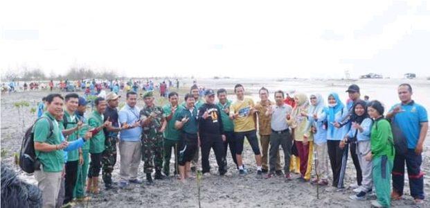 Ikebana Bareng PT Timah Tanami Pantai Rebo Mangrove